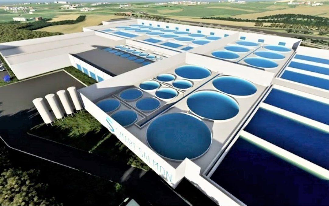 GPA : le (futur) scandale de l'usine à saumons